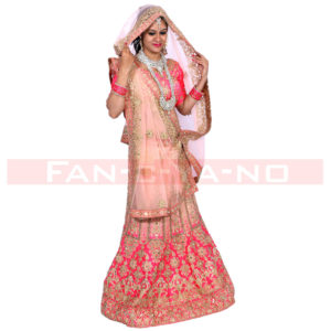 Light Pink Lehenga Choli with Heavy Golden Work
